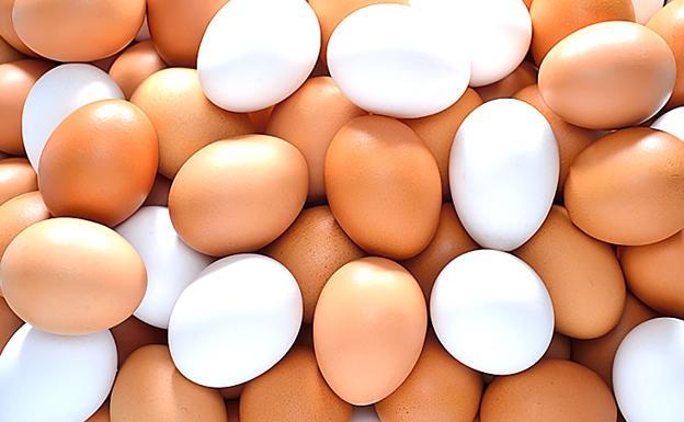 ¿Cuantos huevos se recomienda consumir a la semana?