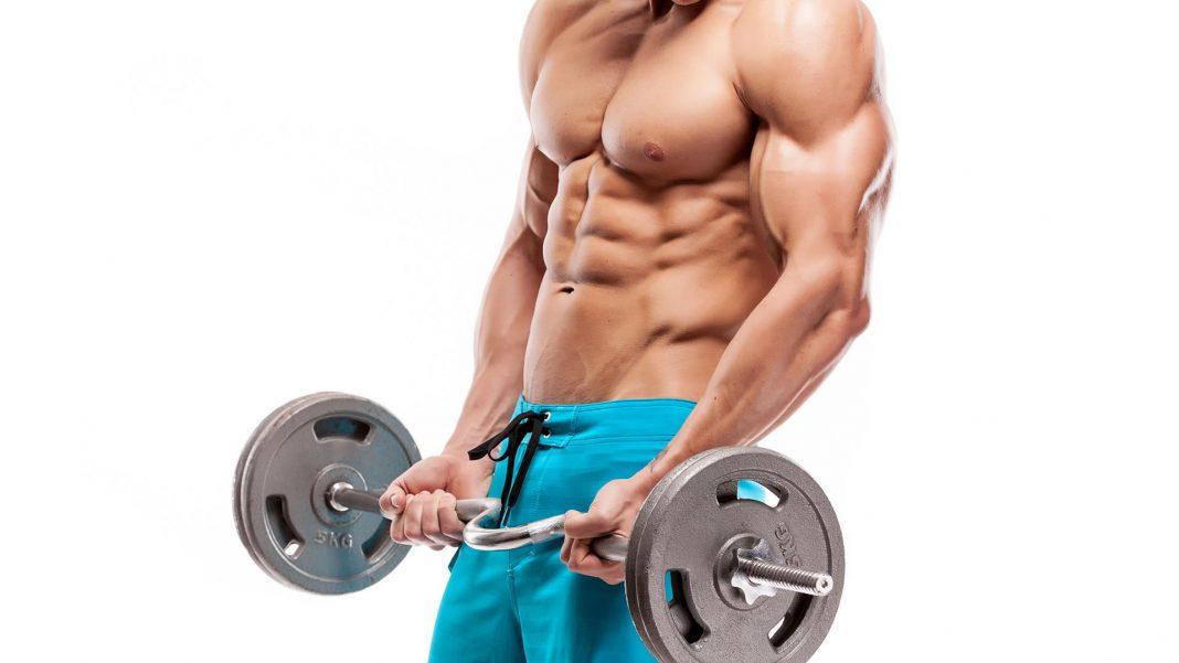 Mejores alimentos para aumentar la masa muscular